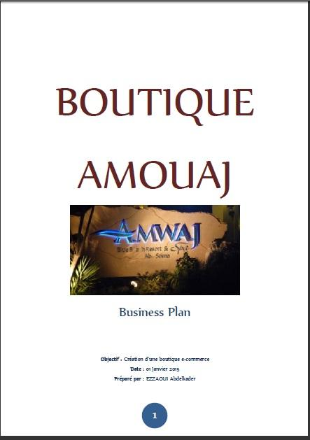 Business Plan d'un Projet de E-Business