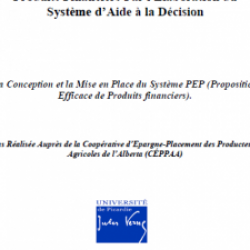 Reengineering der Verkaufsprozess von Finanzprodukten durch die Entwicklung des Entscheidungsunterstützungssystems